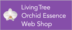 Living Tree Orchid Essence Web Shop